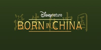 Protecting snow leopards and pandas with Disneynature's Born in China