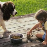 Teaching kids how to care for pets