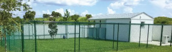 CASA Opens On-Site Kennel at its Domestic Violence Shelter