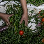 Drive sustainable food systems to conserve nature and feed humanity
